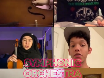 orchestra feeder concert video
